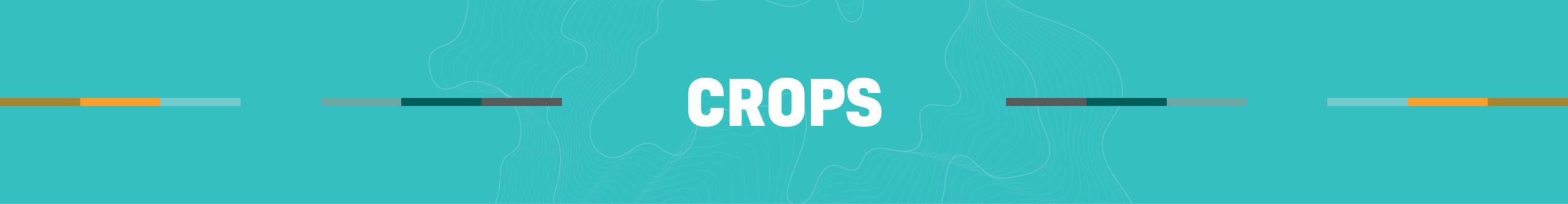 Afrikelp Crops